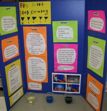 science fair demonstration projects